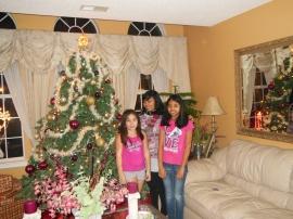 Christmas 2012 Virginia US 2012 - 195