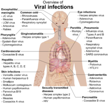 220px-Viral_infections_and_involved_species